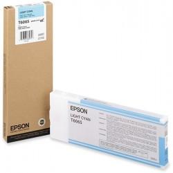 Epson T6065